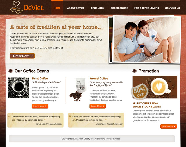 Deviet website design + logo design