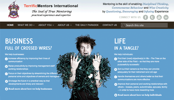 Terrific Mentors WordPress site design and theming